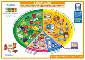 """New UK """"Eat Well Plate"""": same oldrubbish!"""
