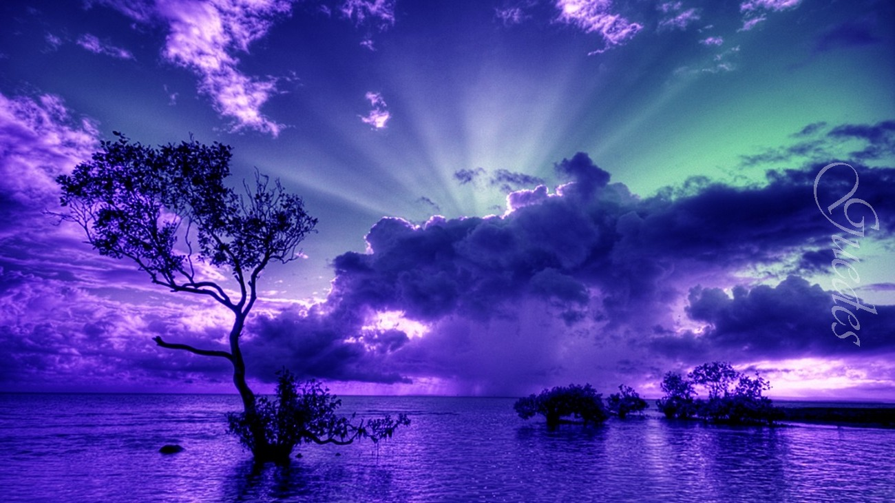 Images-Beautiful-morning-Pictures