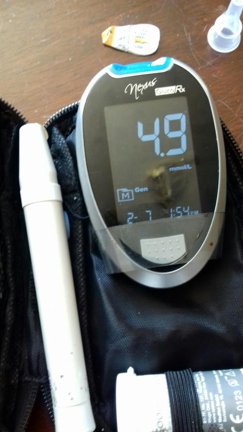 a picture of a blood testing machine on The Diabetes Diet
